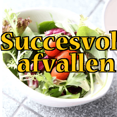 succesvol-afvallen